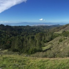 Quarry Trail to Seaview Loop Trail: Tilden Regional Park