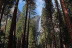 Yosemite National Park February Weekend